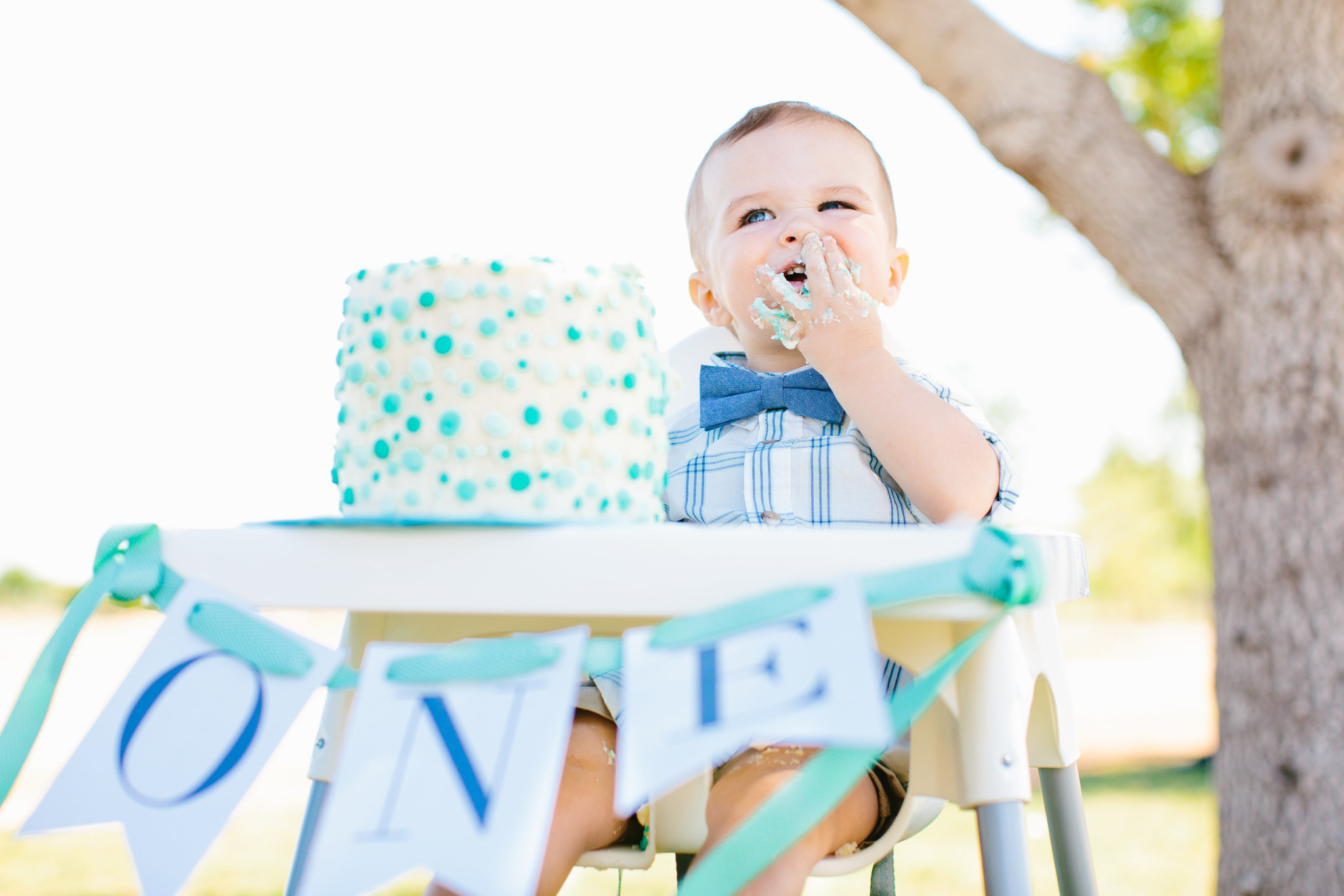 1St Birthday Smash Cake A First Birthday Picnic In The Park Project Nursery