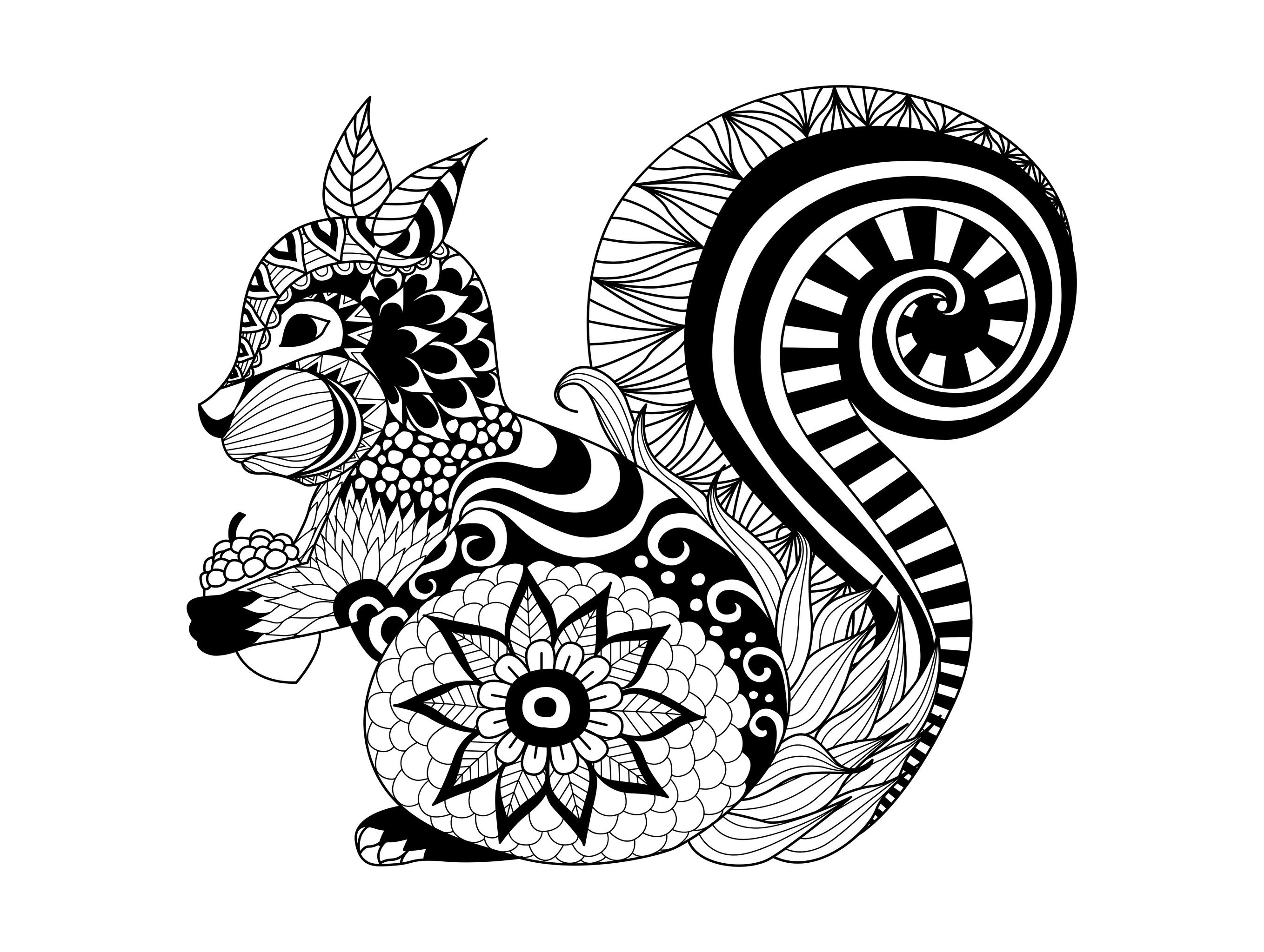 Animal Mandala Coloring Pages Animal Mandala Coloring Pages For