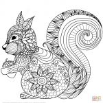 Animal Mandala Coloring Pages Lovely Squirrel Zentangle Coloring Page Fun Time