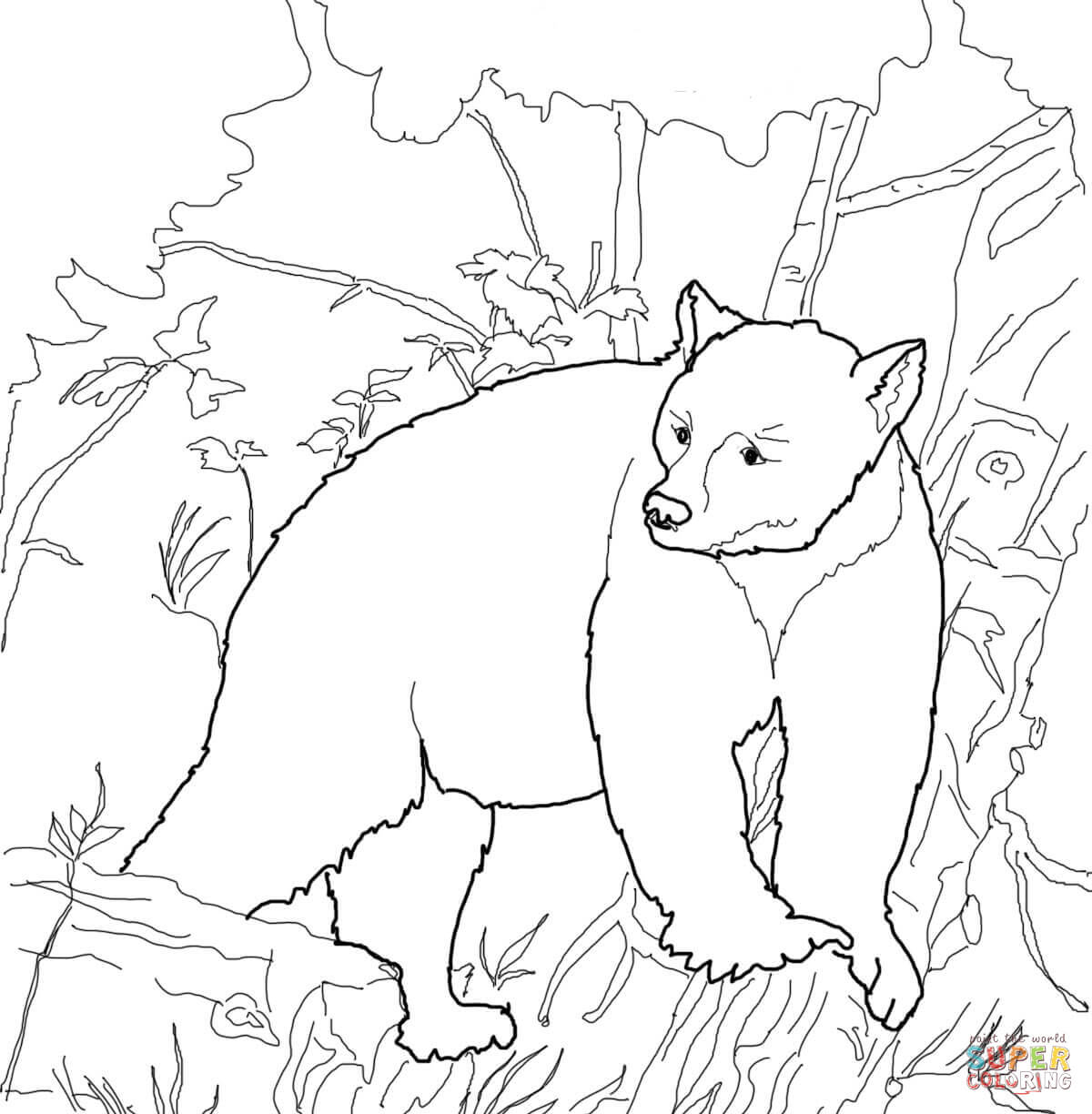 Bear Coloring Pages American Black Bears Coloring Pages Free Coloring Pages