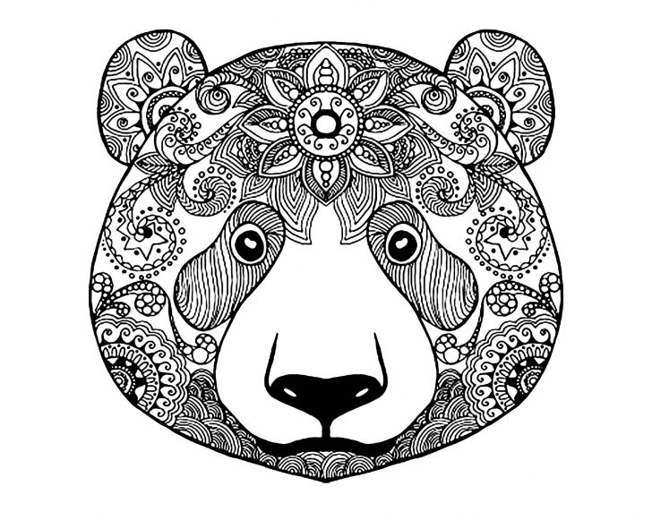 Bear Coloring Pages Bear 2 Bears Adult Coloring Pages