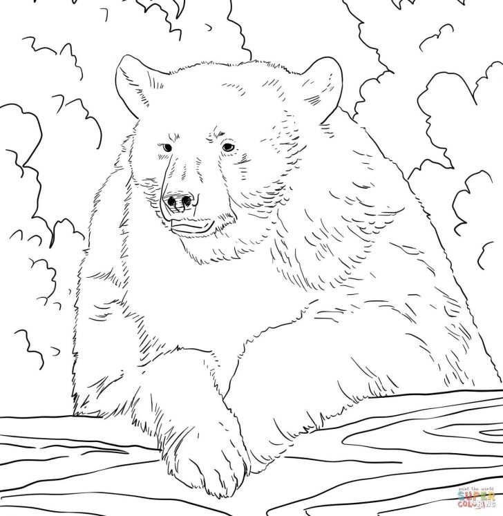 Bear Coloring Pages Bears Coloring Pages Free Coloring Pages