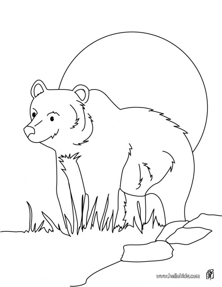 Bear Coloring Pages Grizzly Bear Coloring Pages Hellokids
