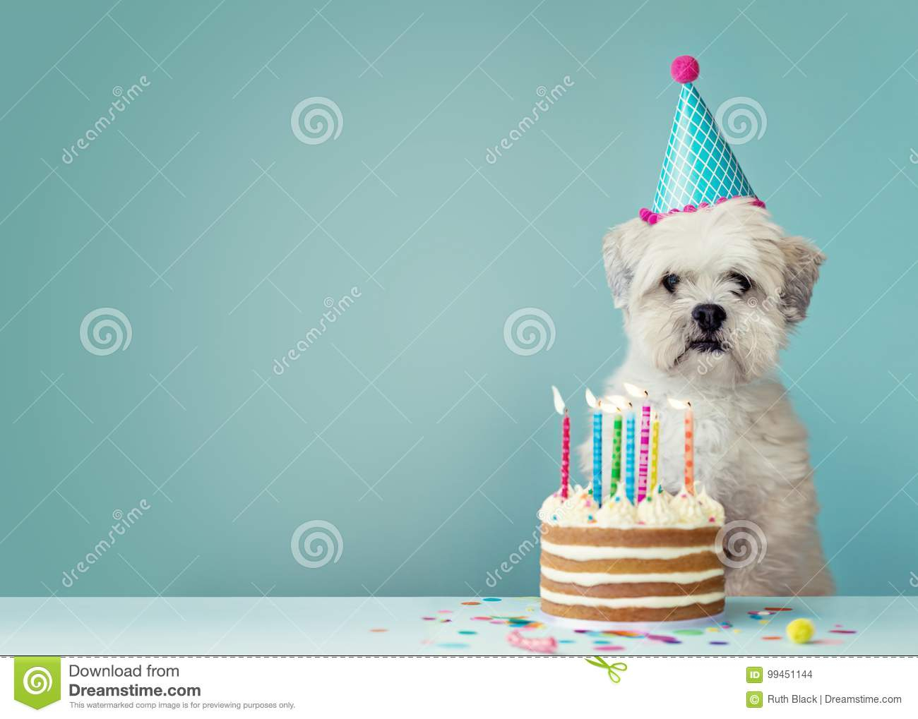 Birthday Cake Pic Download Birthday Cake Stock Images Download 142966 Photos