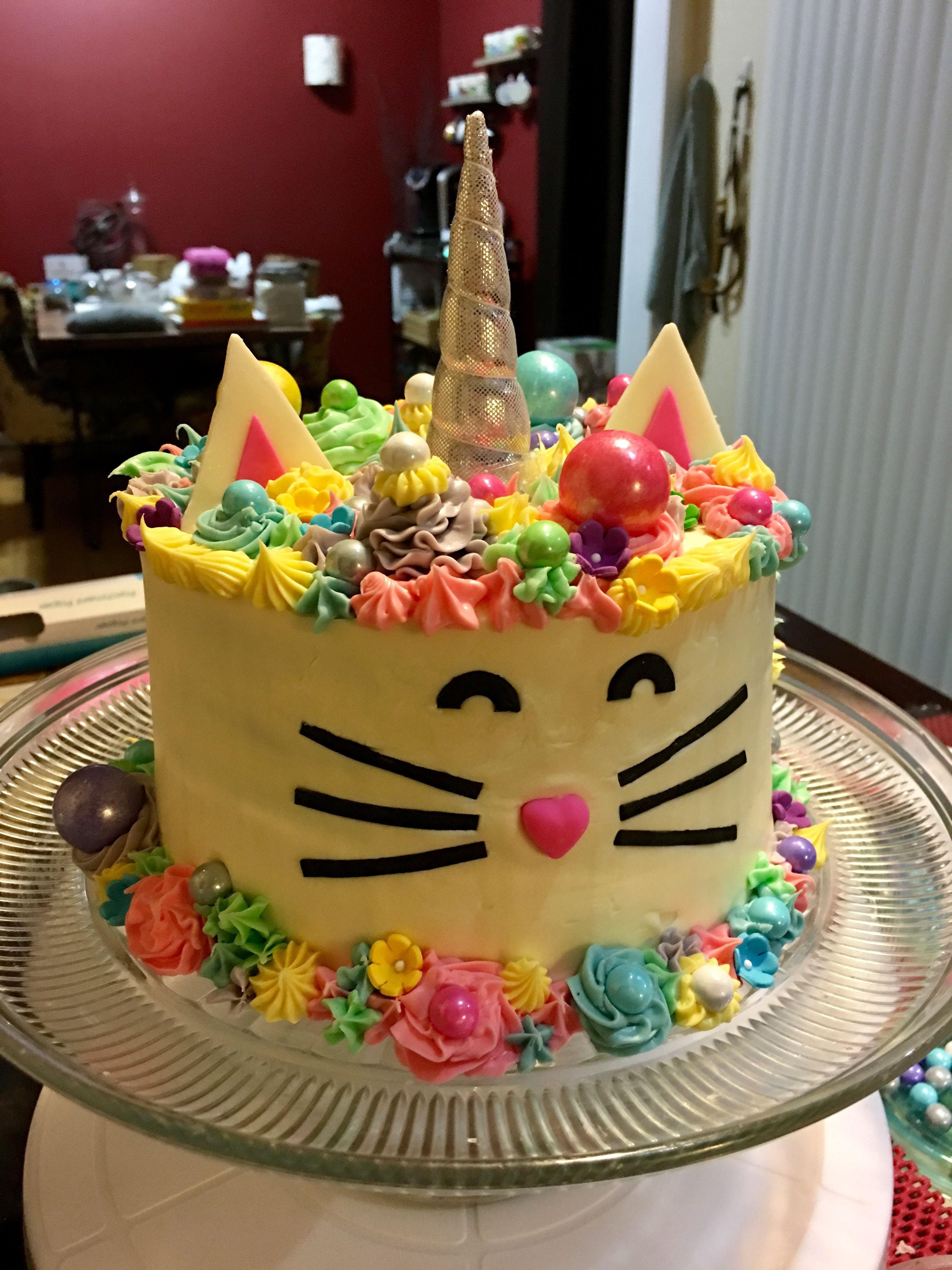 4032 In 32 Elegant Photo Of Cat With Birthday Cake