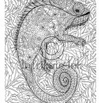 Chameleon Coloring Page Chameleon Coloring Page Animal Coloring Wild Detailed And Etsy