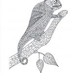 Chameleon Coloring Page Chameleon Coloring Page For Adults Thriftyfun