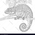 Chameleon Coloring Page Chameleon Coloring Page Royalty Free Vector Image