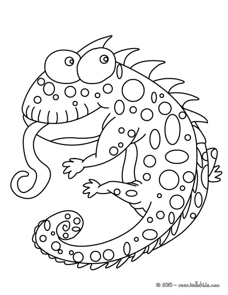 Chameleon Coloring Page Chameleon Coloring Pages 7 Free Reptiles Coloring Pages Online
