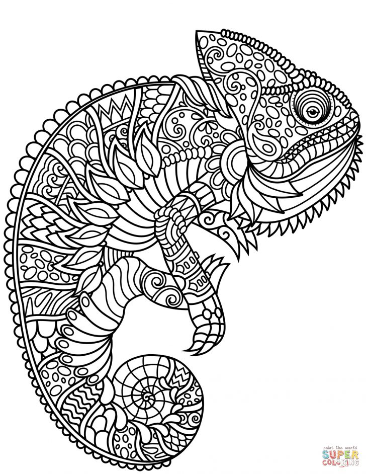 Chameleon Coloring Page Chameleon Zentangle Coloring Page Free Printable Coloring Pages