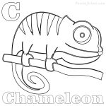 Chameleon Coloring Page Gerbil Coloring Pages
