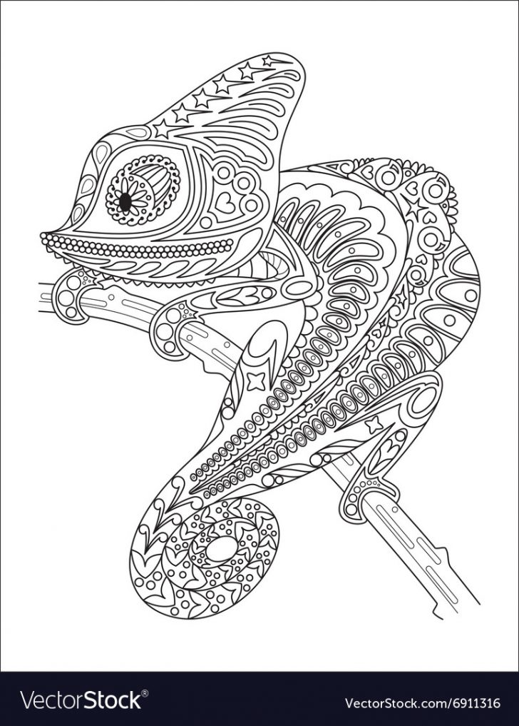 Chameleon Coloring Page Monochrome Chameleon Coloring Page Black Over Vector Image