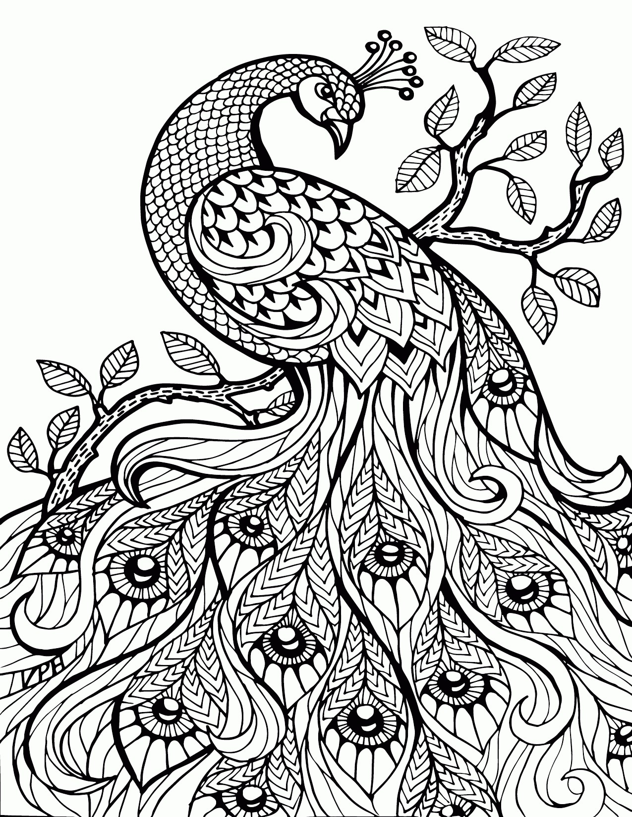 Chameleon Coloring Page The Mixed Up Chameleon Coloring Page New Adult Stress Relief