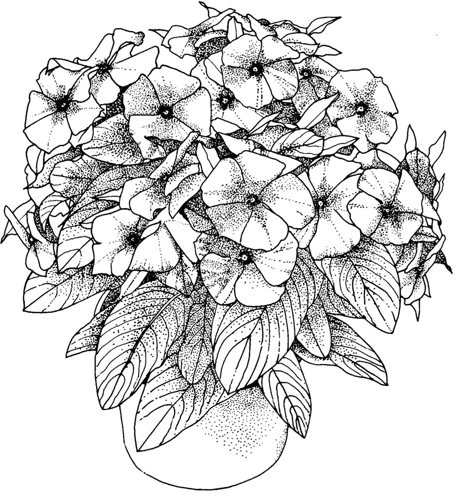 Wonderful Photo of Coloring Pages For Adults Flowers