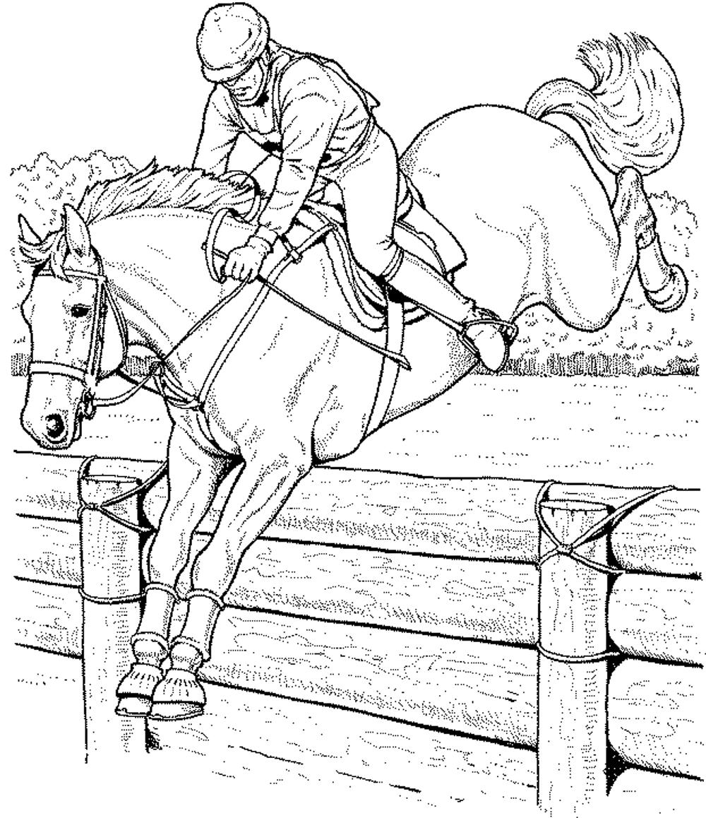 Coloring Pages Horses Free Coloring Pages Of Horses Printable Kids Colouring Pages