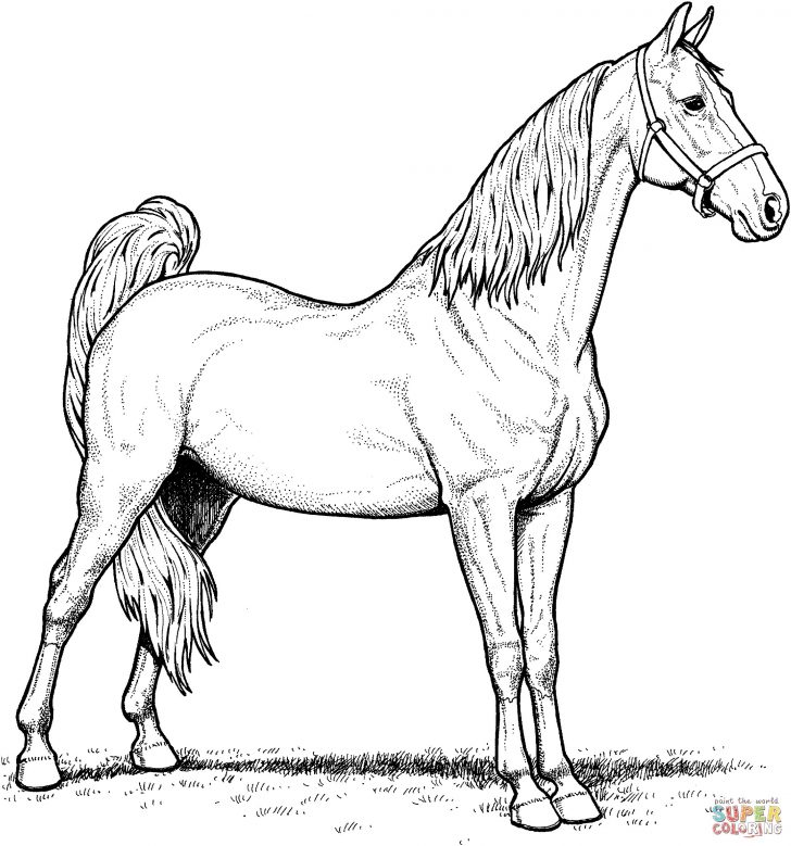 Coloring Pages Horses Spirit Horse Coloring Pages Awesome Coloring Pages Horses Free