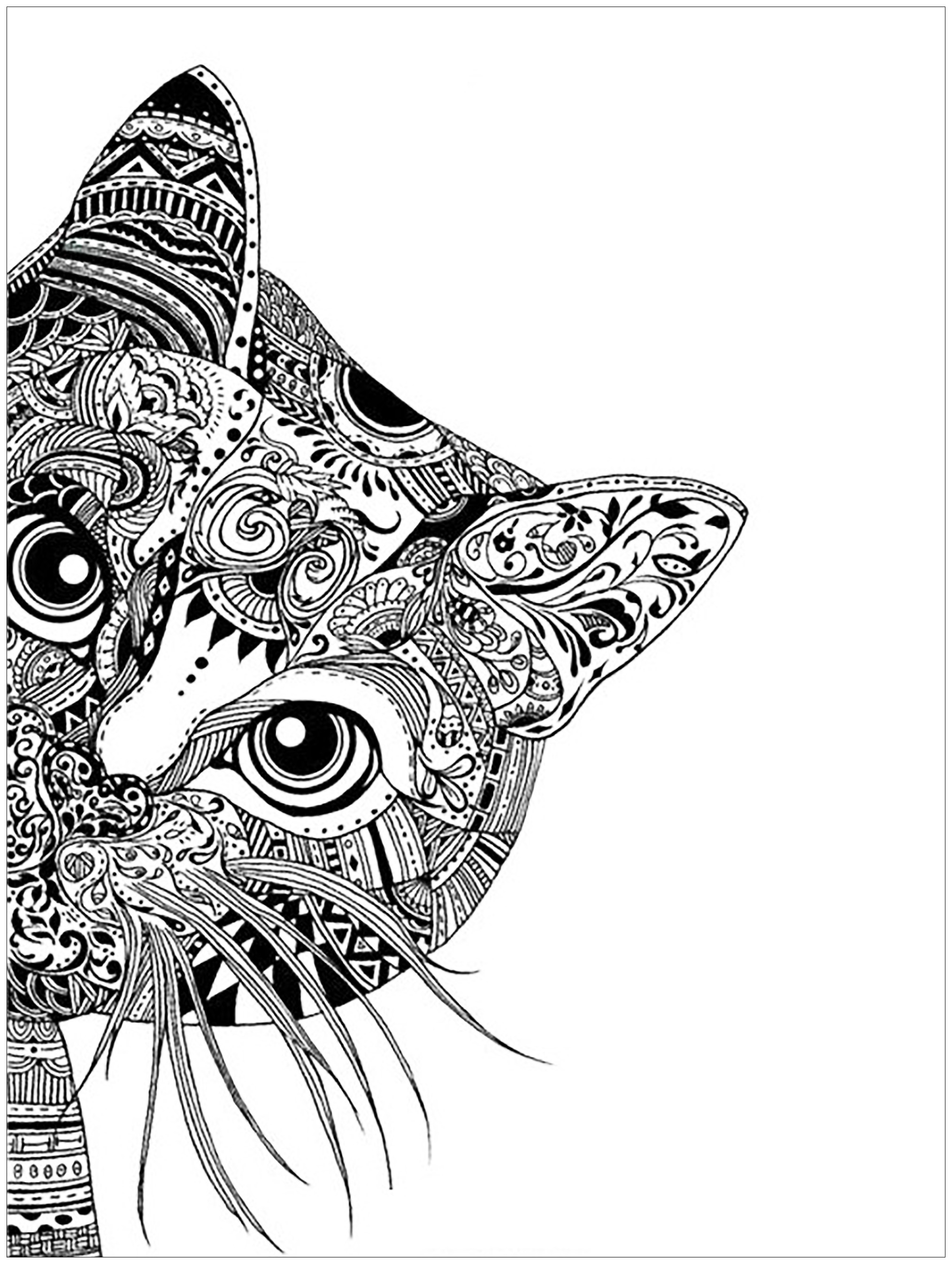 Coloring Pages Of Cats Cat Head Cats Adult Coloring Pages