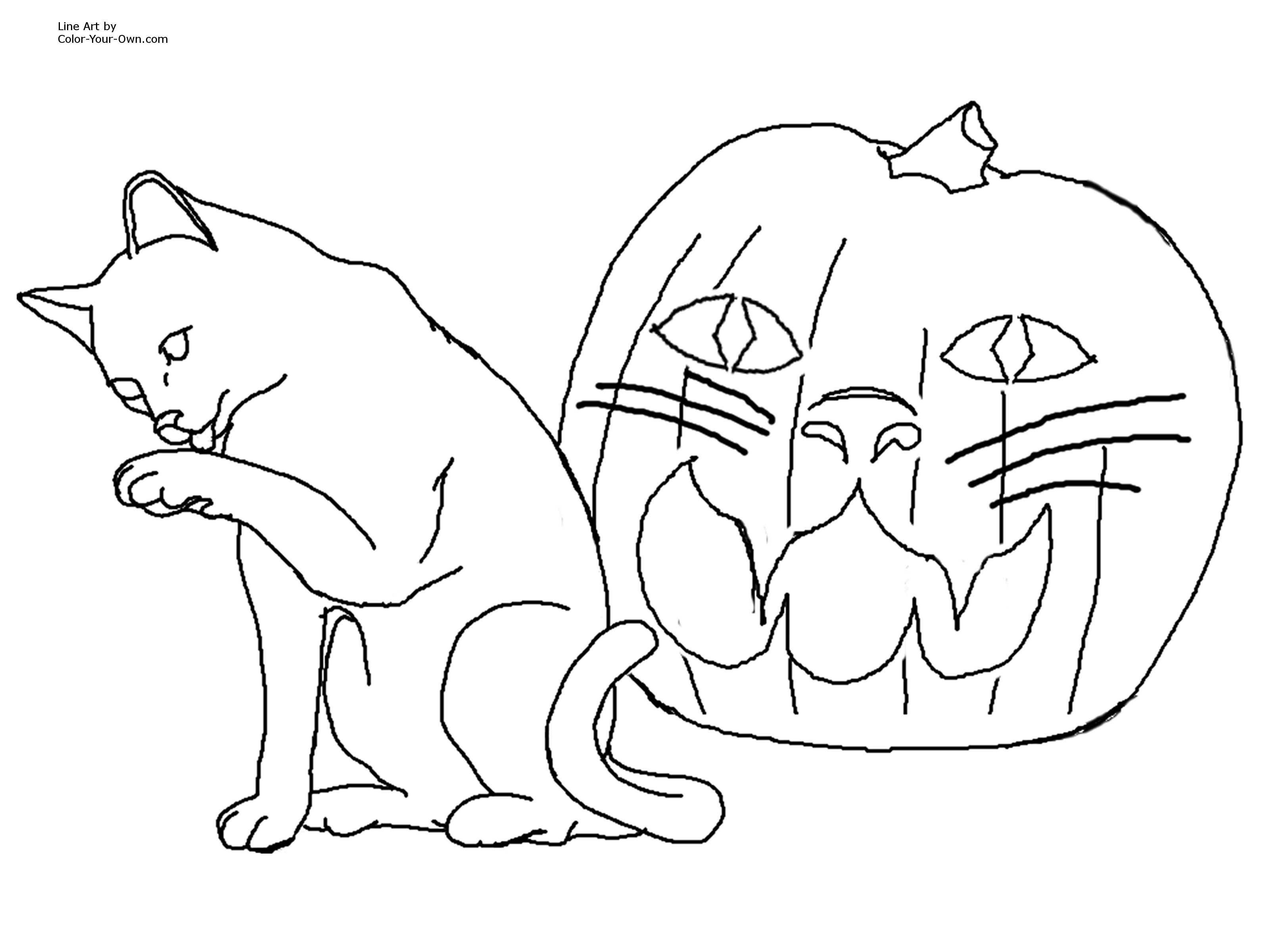 Coloring Pages Of Cats Sweet Looking Halloween Coloring Pages Cats Cat Page Hard For Of