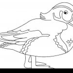 Daisy Duck Coloring Pages Duck Color Page Ducks Coloring Pages How To Draw Ba Duck Coloring