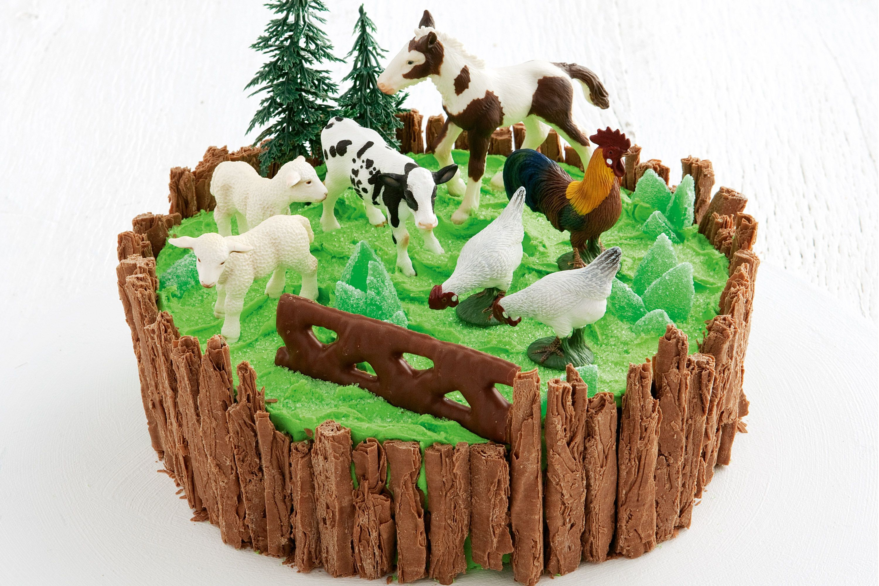 Farm Birthday Cake Farmyard Cake