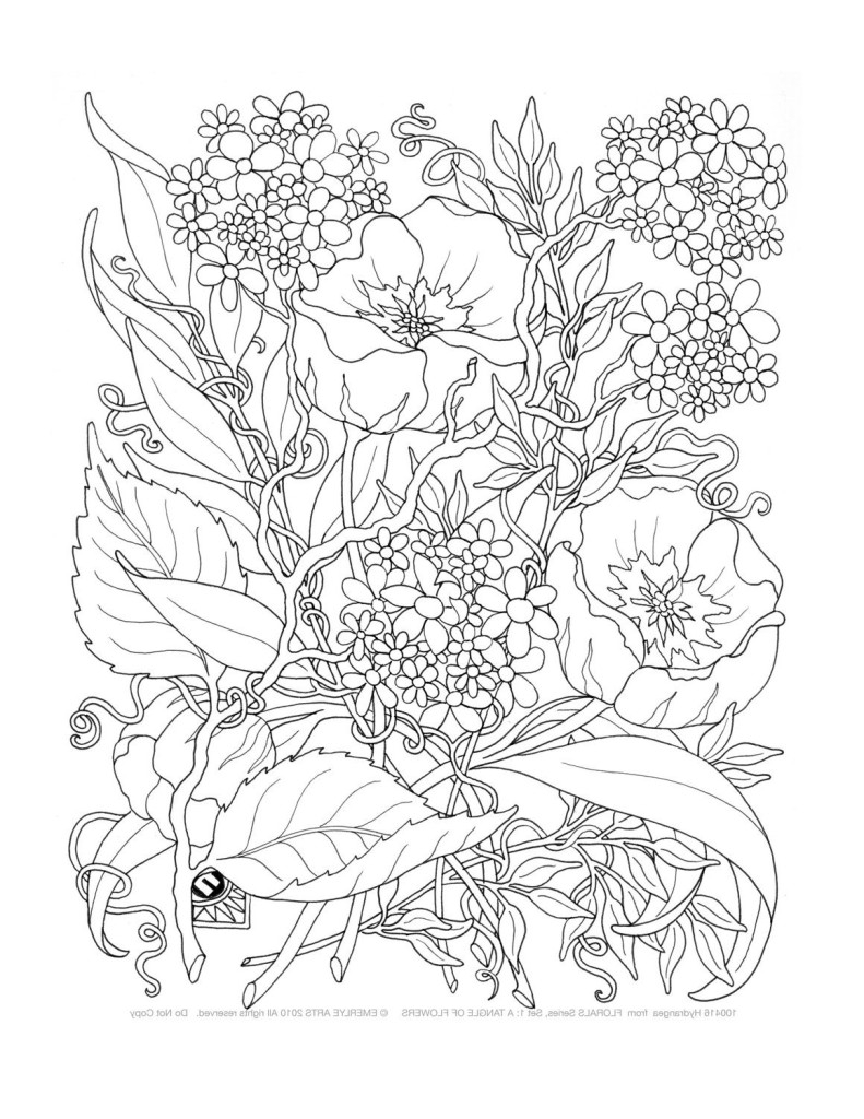 Free Printable Coloring Pages Adults Only Free Online Printable Coloring Pages For Adults At Getdrawings