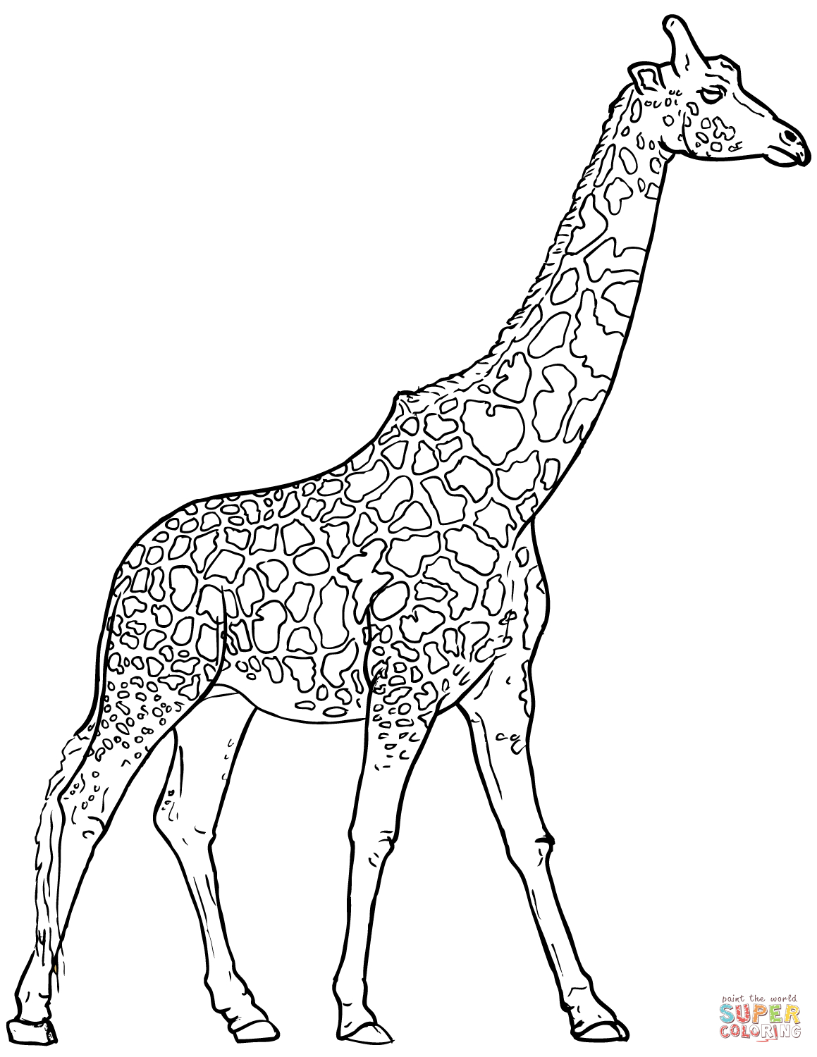 21+ Exclusive Picture of Giraffe Coloring Pages
