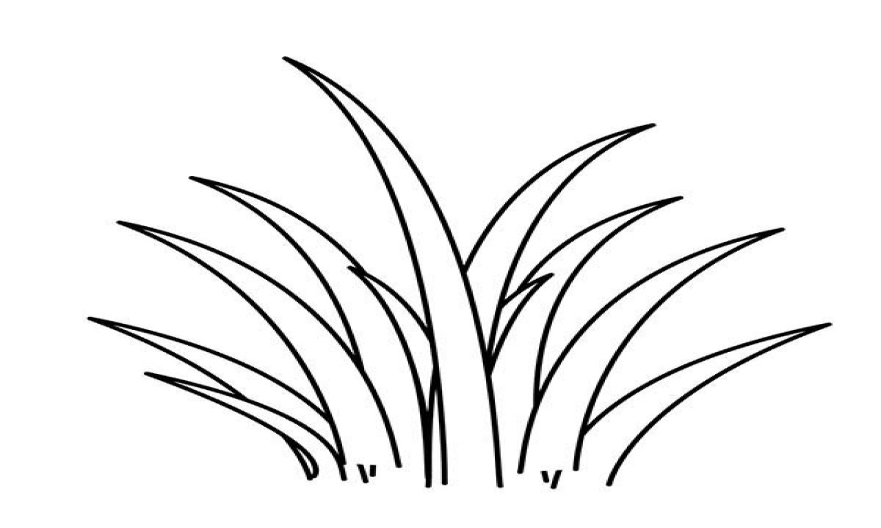Grass Coloring Page Plant Green Grass Coloring Pages Print Coloring