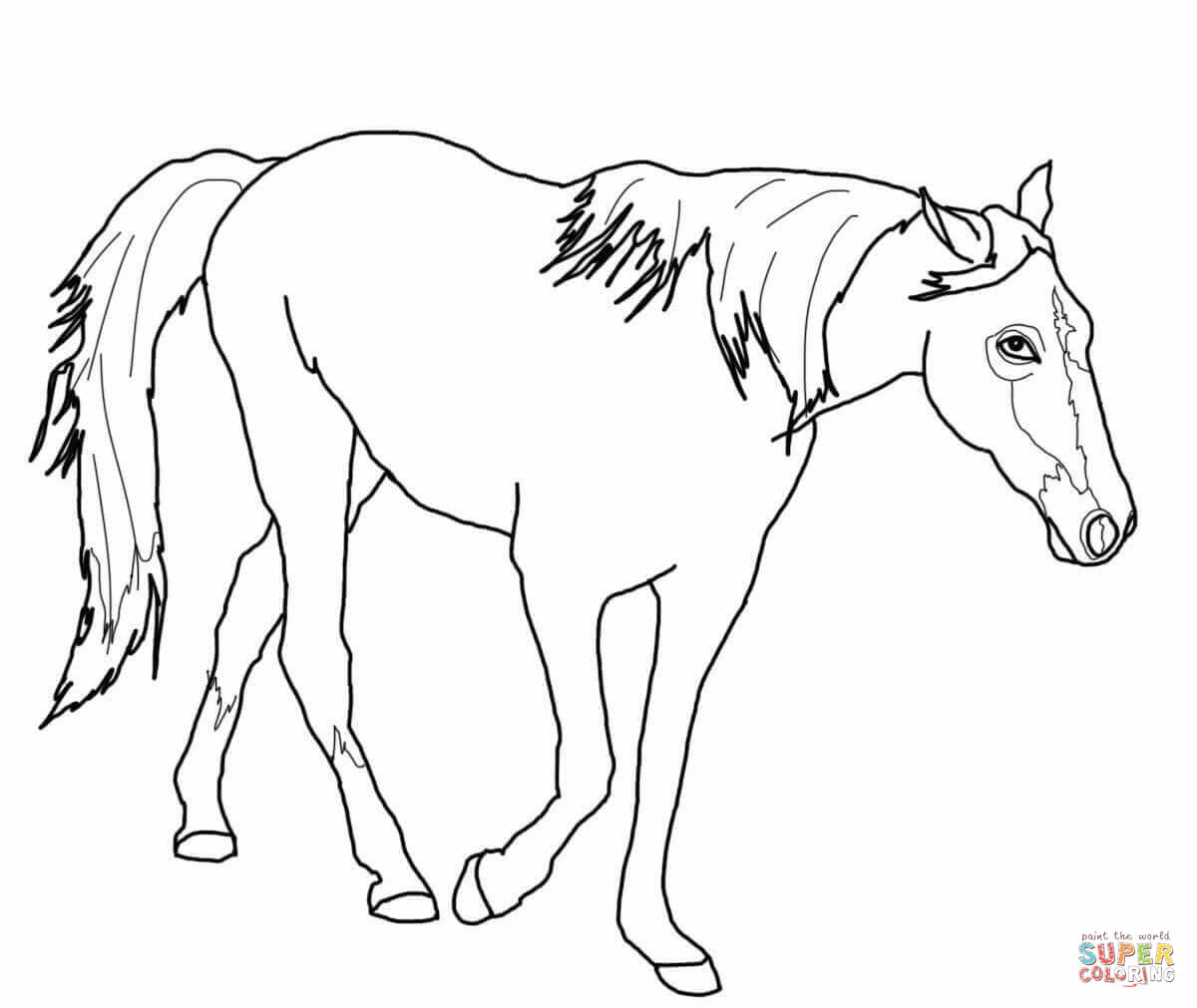 Horse Coloring Page Friesian Horse Coloring Page Free Printable Coloring Pages