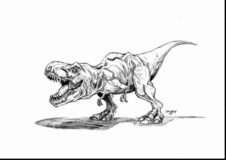 Jurassic World Coloring Pages Jurassic World Coloring Pages Elegant Gallery New World Coloring
