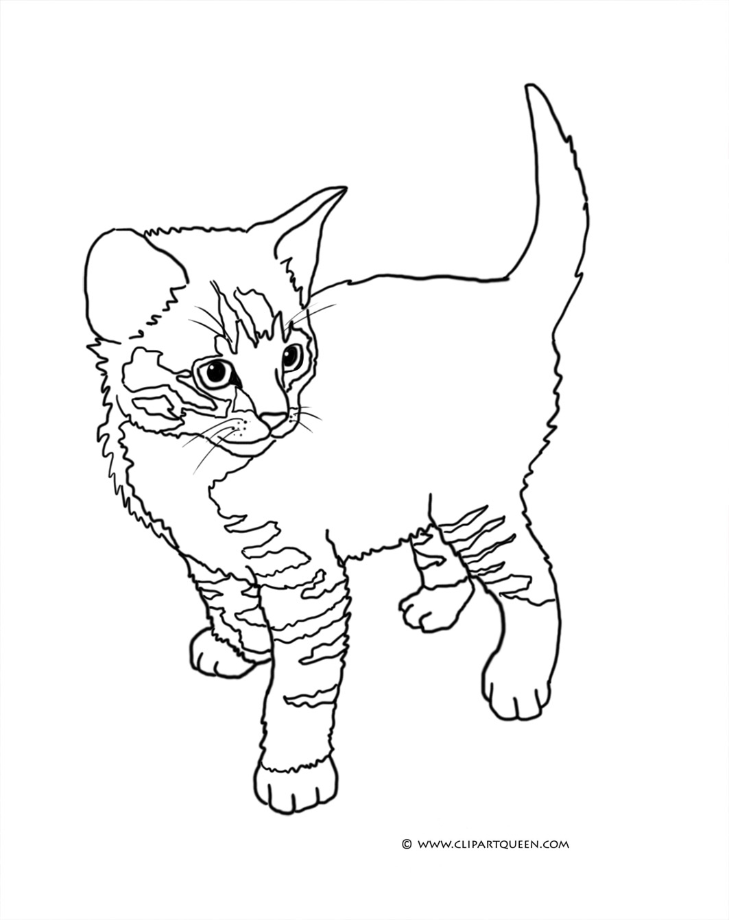 Kittens Coloring Pages Cat Coloring Pages