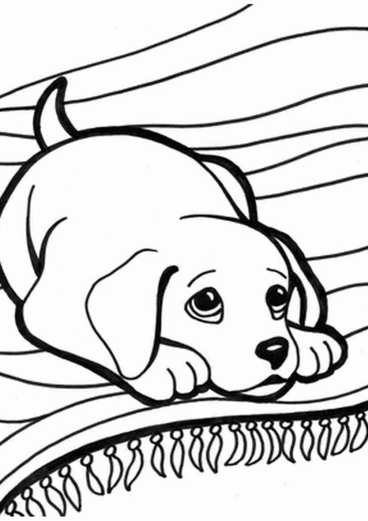 Kittens Coloring Pages Puppy And Kitten Coloring Pages 17 Puppies Kittens To Magnificent