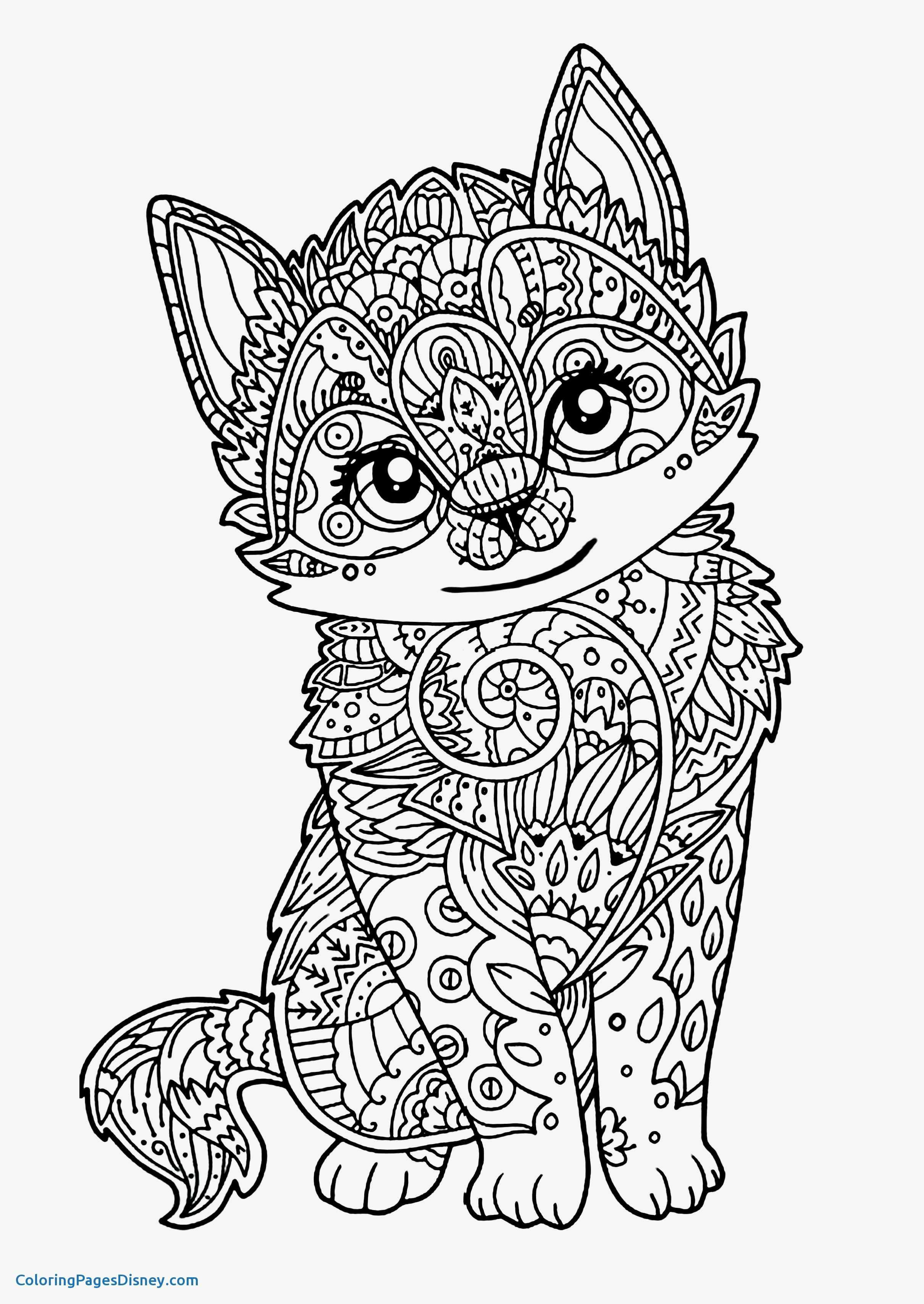 Kittens Coloring Pages Puppy And Kitten Coloring Pages Best Of Cool