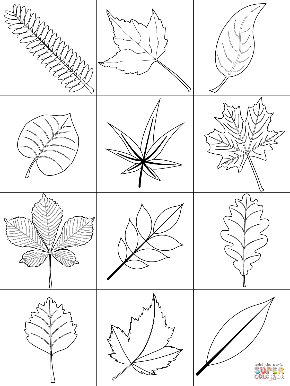 Leaf Coloring Page Autumn Leaves Coloring Pages Autumn Leaves Coloring Page Free