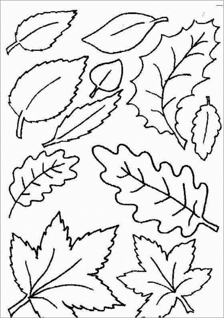 Leaf Coloring Page Coloring Pages Autumn Leaves Coloring Pages Page Freeable Awesome