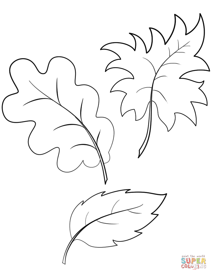 27+ Inspiration Picture of Leaf Coloring Page