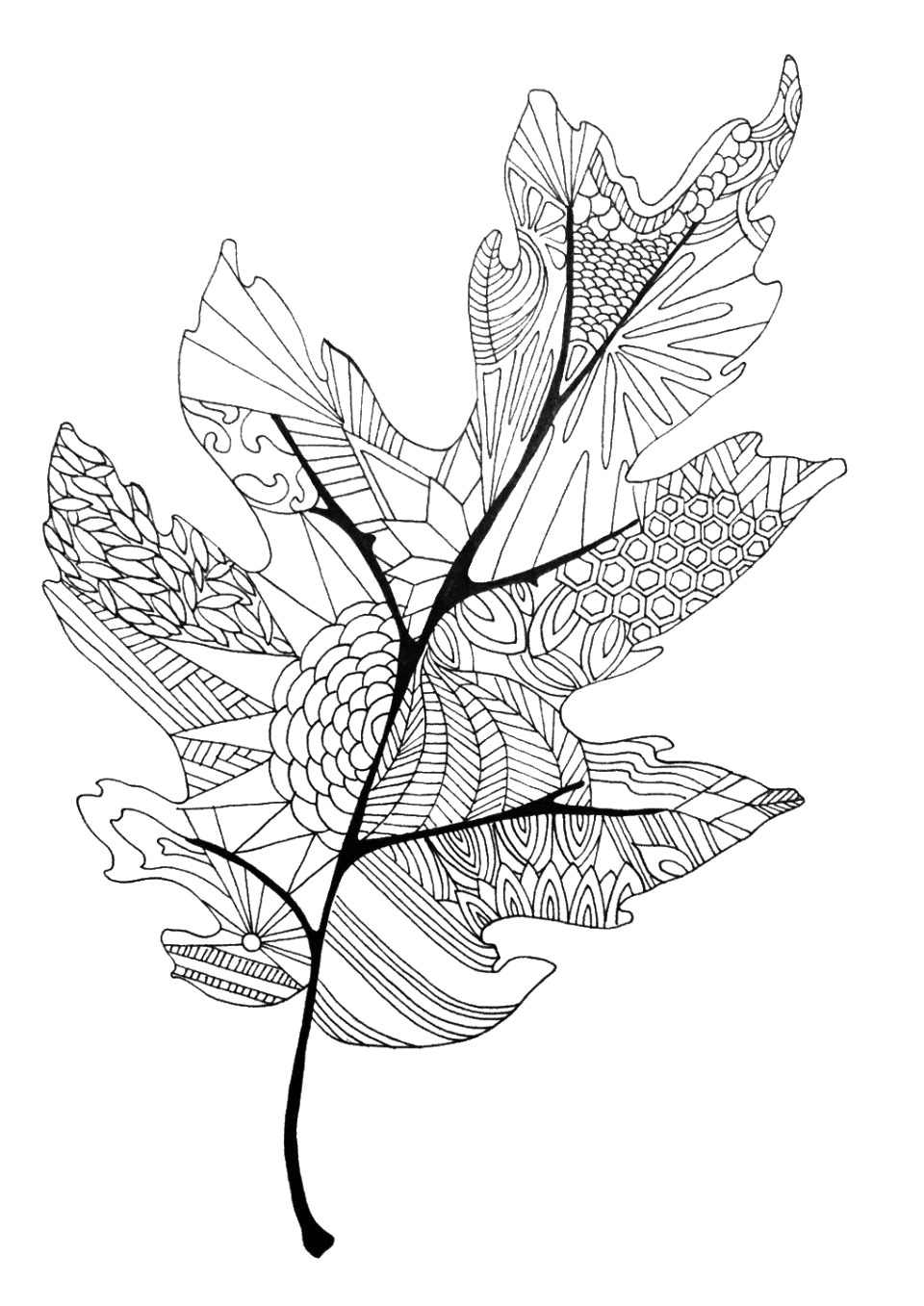 Leaf Coloring Page Fall Leaves Coloring Page Leaf Pages Diywordpress