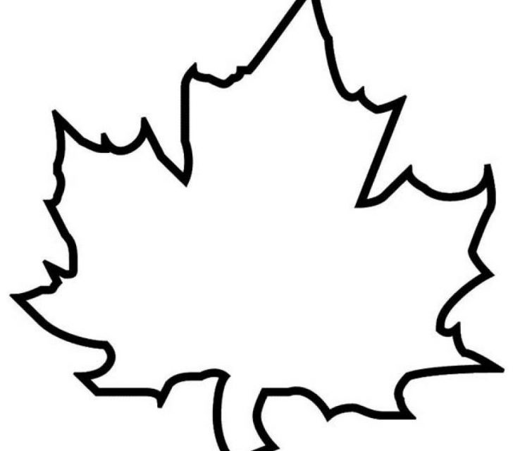 Leaf Coloring Page Maple Leaf Coloring Page Vietti