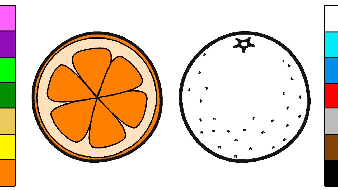 Orange Coloring Page Orange Fruit Coloring Page For Kids Youtube
