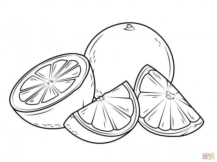 Orange Coloring Page Oranges Coloring Pages Free Coloring Pages