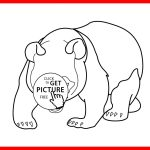 Panda Bear Coloring Pages Literarywondrous Panda Bear Coloring Pages Stunning Pict For Do You