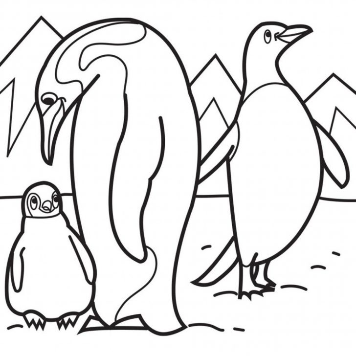 Penguin Coloring Page Ba Penguin Coloring Pages Free Download Best Inside Within Page