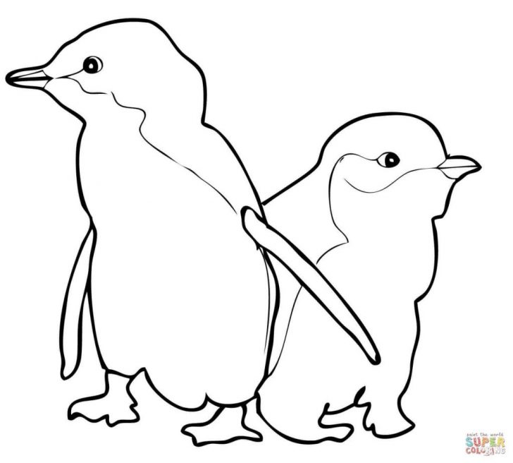 Penguin Coloring Page Coloring Pages 48 Fabulous Pittsburgh Penguins Coloring Pages