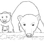 Polar Bear Coloring Pages Curious Polar Bear Mother And Cub Coloring Page Free Printable