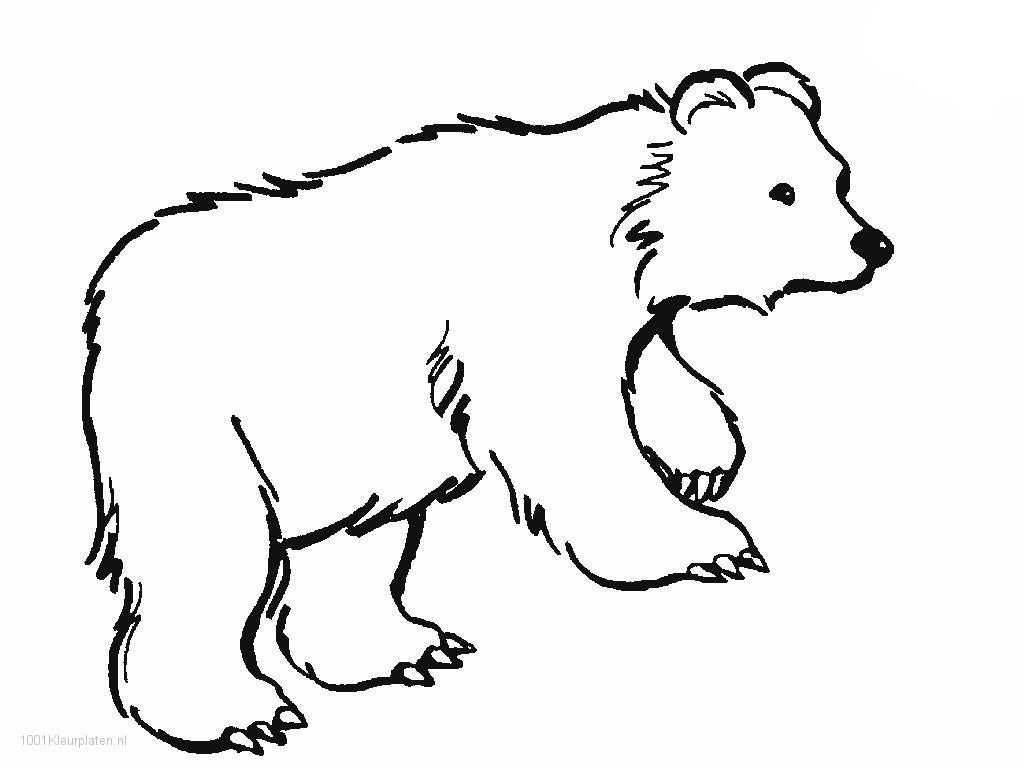 Polar Bear Coloring Pages Polar Bear Polar Bear Coloring Pages Classic Style Printable