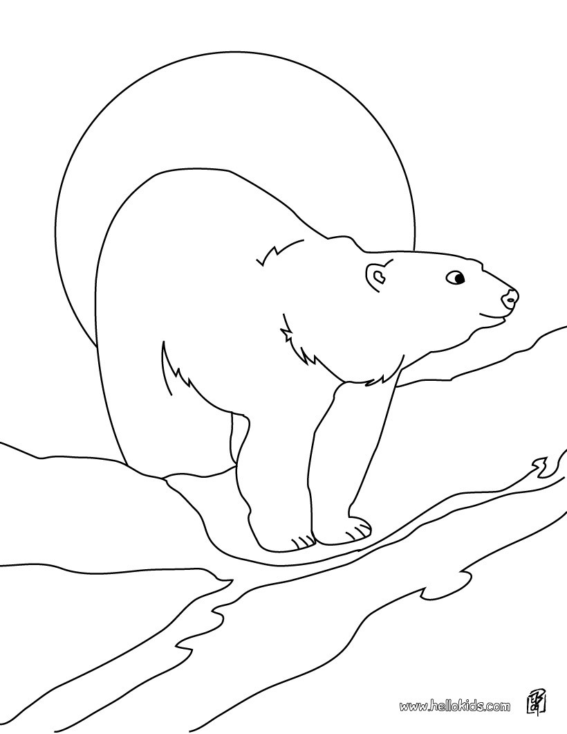 Polar Bear Coloring Pages Polar Bear Printable Coloring Pages Hellokids