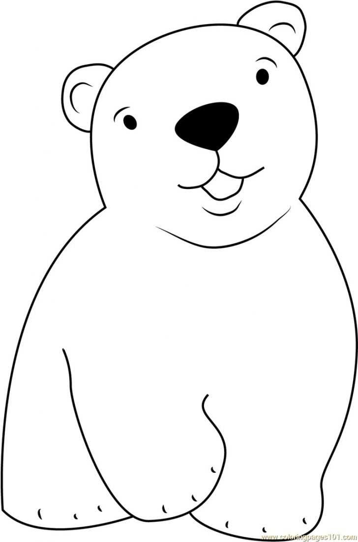 Polar Bear Coloring Pages Ultimate Polar Bears Color Cute Little Bear Coloring Page Free The