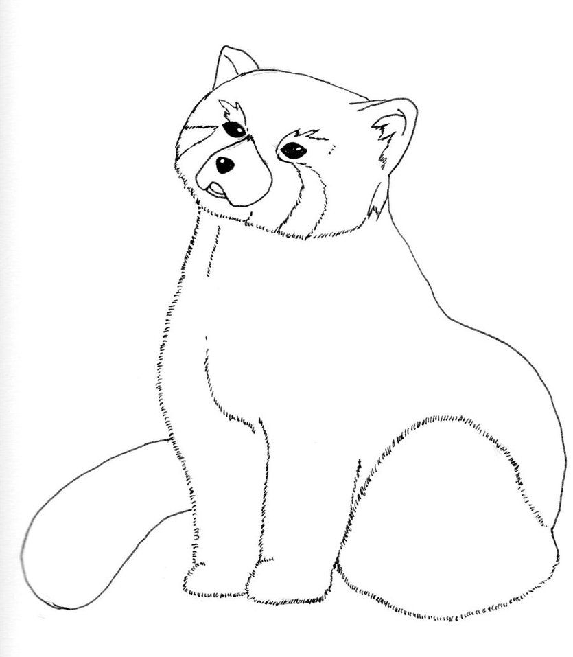 Red Panda Coloring Page Top Red Panda Coloring Pages Ideas For You 29957 Coloring Page