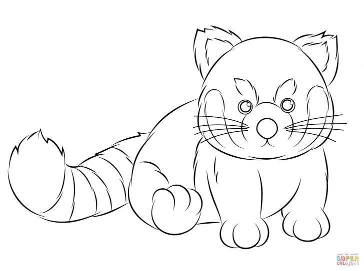 Red Panda Coloring Page Webkinz Red Panda Coloring Page Free Printable Coloring Pages
