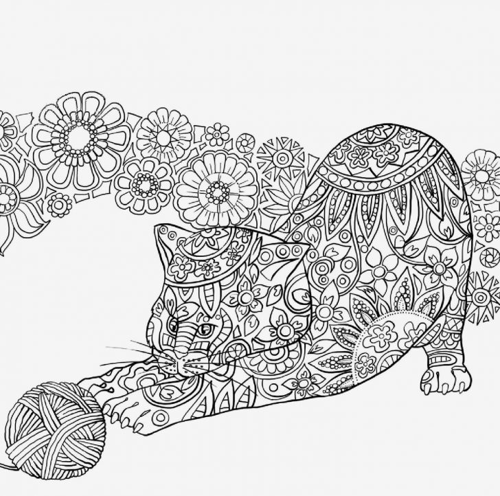 Solar Eclipse Coloring Page Eclipse Coloring Pages For Kids With The Best Ever Solar Eclipse