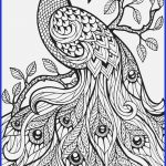 Stress Relief Coloring Pages Printable Watercolor Pages At Getdrawings Free For Personal